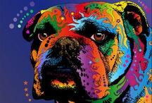 bulldogs / by Brenda Lindamood