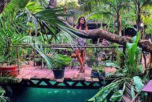 Bali eats/things to do