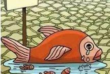 türkçe karikatürler