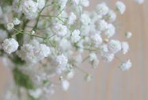 Fleurs Mariage / Notre Top 10 pour fleurir notre mariage :)
