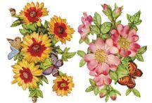 matrica lepke bogár virággal / stickers butterfly beetle flower