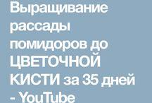 Нижегород.обл.