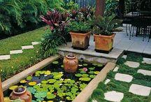 Wee Gardens