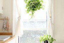 habillage de fenêtres cuisine