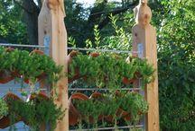 Sebze yetiştirmek için pratik çözümler.