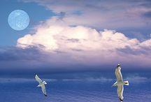 Free To Download Meditation Music / Meditation music by psychic medium Ian Scott