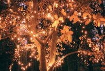 """Diwali Decor with Fabfurnish"""