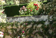 Сады Европы