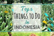 Indonesië Sumatra-Java-Bali trip 2016