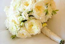 Weddings / by Ashley Hurdle