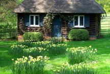 Houses - Darling Little Cottages / by cathy cannon