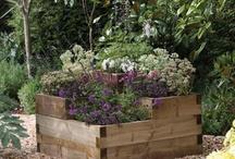 Garden & Landscaping ideas