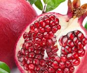 Nutrition / Nutrition tips and options for breast cancer patients and survivors alike.