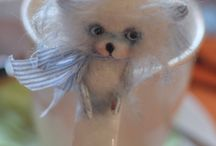 Dolls stories / photo of my dolls