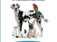 Pet Friendly Accomodation - Australia / Just some of the many places where your pets are welcome. Get the book