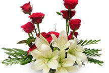Send Flowers Online / There are no such things as Flowers there are only gladdened Leaves.