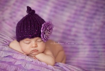 Baby Photography / by Joanna Nadeau Rogers