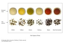 Teas and Tisanes / What is your favorite tea recipe?