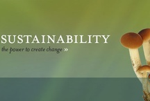 Sustainability Explained / by Green College