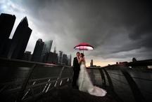 umbrella / by Niki Manning