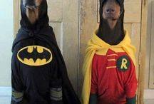 Amici mascherati / Una raccolta di immagini divertenti dei nostri Amici Zampa Animali in #costume.