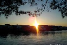 Sunrises & Sunsets   Ocean City MD / Sharing pictures of sunrises & sunsets all around Ocean City MD and the DelMarVa Peninsula.  Comment on an image of a sunrise or sunset, say you'd like to be added to this Board so we may share your best sunset pictures  #ocmd