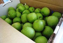 Apples, Apples, Apples / by Katie Schwartz