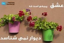 عشق ایرانی