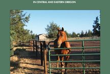 Horses, Farms and More! / Horsekeeping, farming, and more in the watershed and how we can use best management practices to protect our water resources.