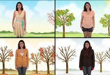 Four seasons unit