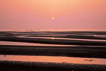 鴇色の岸辺 イメージボード