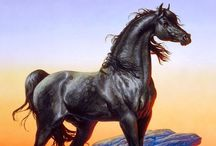 The Fantasy of Horses