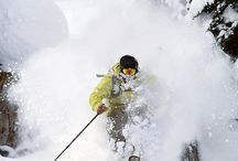 Powder / by Solitude Mountain Resort