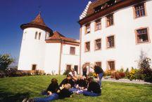 Schule Schloss Salem / Die Schule Schloss Salem bietet eine altersgemäße Bildung an den drei Standorten Burg Hohenfels (Unterstufe, Klassen 5-7), Schloss Salem (Mittelstufe, Klassen 8-10) und Schloss Spetzgart / Campus Härlen (Oberstufe, Klassen 11-12)