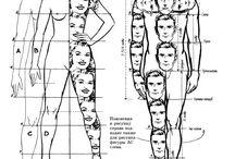 рисунок пропорции тела человека