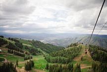 Aspen Photos