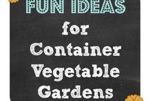 A033- Gardens & Plants