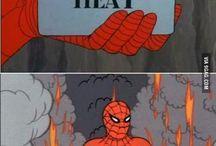 Spider meme