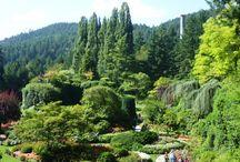 Garden Travel / by Halleck Horticultural
