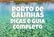 Voltar a Porto de Galinhas