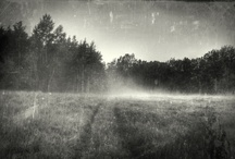 Alternative Process Photography / by Michael Winokur