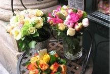 Parisian flower shops / .