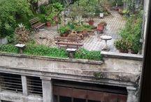 Roof Gardens / Roof garden envy