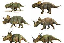 Dinosauri, animali preistorici e fossili.