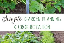 create: garden / Tips, design, inspiration, and practical ideas for a beautiful, fruit and vegetable producing garden.