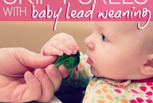 Baby led weaning feeding / Recipes, food and information on BLW feeding