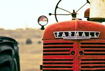 If it ain't red leave it in the shed / Farmall tractors