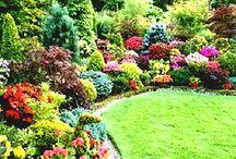 Landscape ideas Kitchener