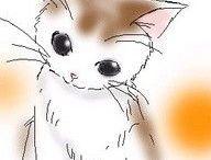 ♥️ Cat
