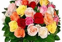Gifts to Pune, /  We are suppliers of Pune Florists, Red Roses to Pune, Birthday Gifts to Pune, Anniversary Flowers to Pune, Wedding Gifts to Pune, Gift to Pune, Send Gift to Pune, Pune Florist, Pune Florists, Sending Flowers to Pune, Sending Gifts to Pune, Cakes to Pune, Gift Vouchers to Pune, Food Coupon to Pune, Pantaloon Vouchers, Shopper's Stop Vouchers to Pune, Fresh Baked Cakes to Pune, For more information about Feelings Florist, click on http://www.flowers4feelings.com/gifts_to_pune